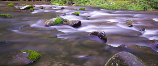 GSMNP - Laurel & Little River Roads