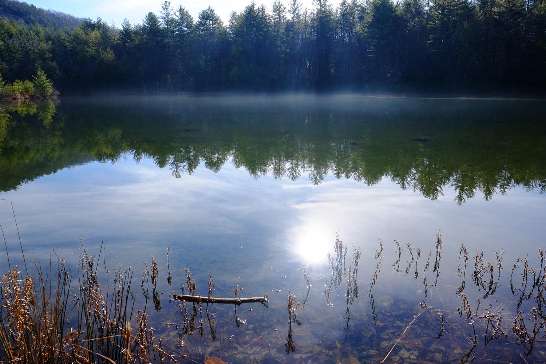 Lake Dense. FUJIFILM X-T1, 16mm, F8, 1/400 sec., ISO 400