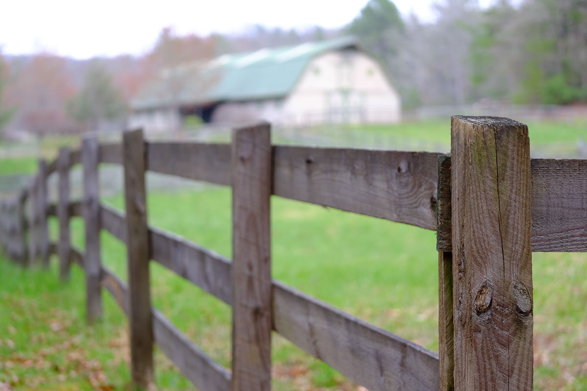 Barn at DuPont State Forest