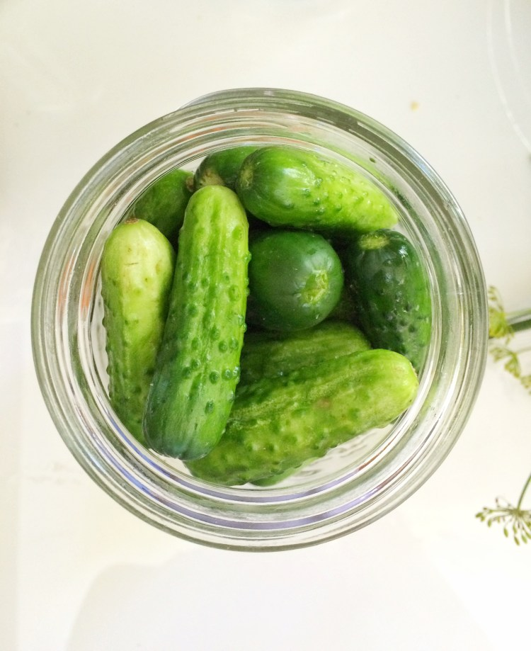 Best Ever Pickles