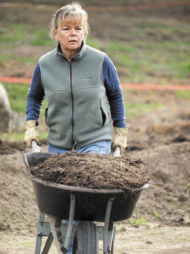Local volunteer Margie Bushman hauls a wheelbarrow full of mulch across the garden.