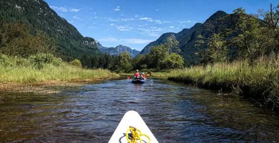 Widgeon Creek Paddle