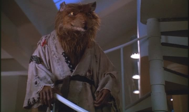 splinter from teenage mutant ninja turtles tmnt