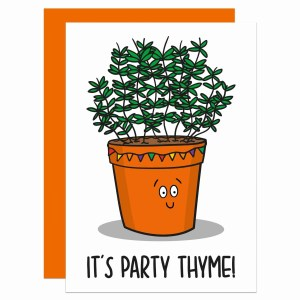 Pun Birthday Card, Funny Birthday Card, Thyme Pun Card, Its Party Time, Herb Pun Card, Card for Food Lover, Card for Chef, Card for Cook, TeePee Creations, Confetti Card, Fun Party Card, Joke Birthday Card, Happy Birthday Card