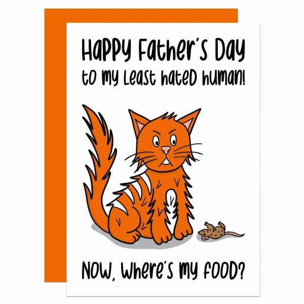 """White greetings card with ginger cat and dead mouse illustration and the phrase """"Happy Father's Day to my least hated human! Now, where's my food?"""" on the front."""