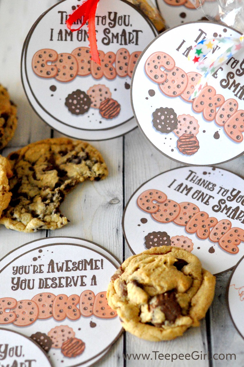 "These cookie teacher appreciation gift tags are perfect for expressing your gratitude to teachers at school, church, and in the community. Or you can you the ""You're awesome"" tag for anyone who deserves to know you care! Get them today at www.TeepeeGirl.com."