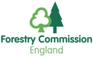 FC_England_logo