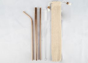 Stainless Steel Straw 1