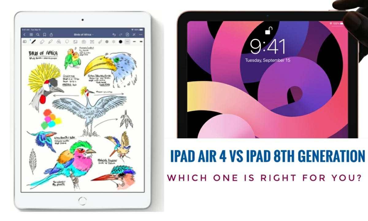 Which iPad You Should Buy? |iPad Air 4 or iPad 8th Gen