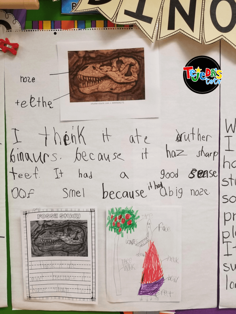 We studied the fossil picture and made inferences about the dinosaur- what it ate, where it lived, how it moved, etc. Fun part of our dinosaur study! #tejedastots