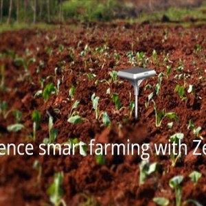 My plan to transform Africa's agriculture with Zenvus Smartfarm