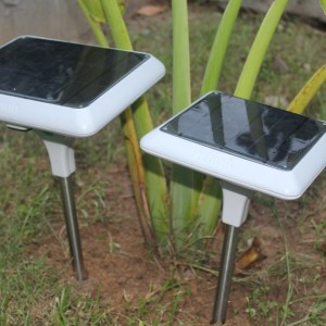 Zenvus Crop Sensors: From Idea to Scale