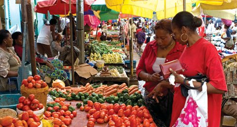 The Challenge in Africa's Agriculture Value Chain