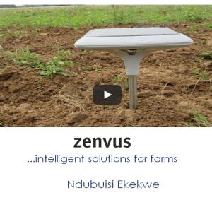 What Is Zenvus?