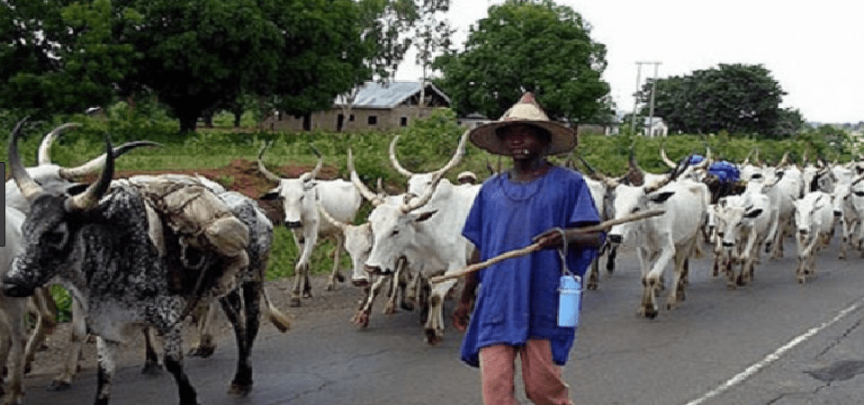 Fixing Nigeria's Herdsmen Crises