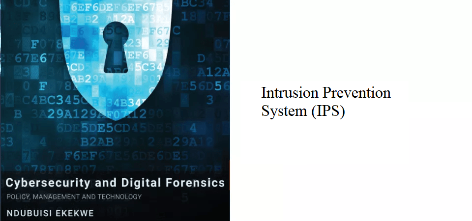 11.1 – Intrusion Prevention System (IPS)