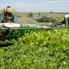 30 Agro and Agtech Business Ideas for Nigeria, Africa