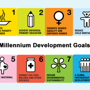 Meeting the Sustainable Development Goals through Higher Education