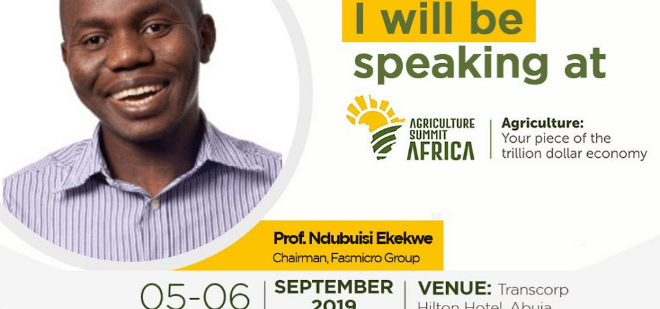 Ndubuisi Ekekwe Will Speak In Sterling Bank's Agriculture Summit – Ag, The $1 Trillion Sector