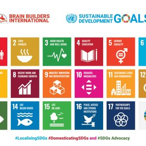 Five Years of SDGs in Africa: Why Setting Country Specific Benchmark  in achieving the Global Milestones Matters