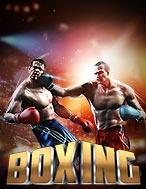Boxing / Gameplay