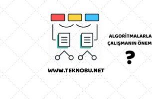 Algoritmalarla Çalışmanın Önemi
