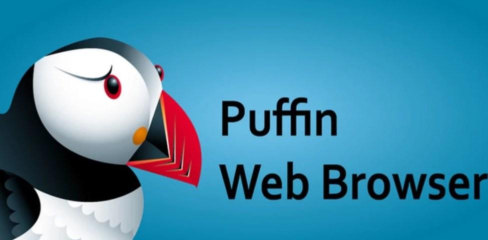 Puffin Pro Apk Son Sürüm 2021 İndir