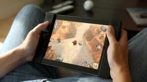 Audojo iPad case