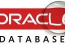 Oracle ORA-03113 Error Hatasının Düzeltilmesi