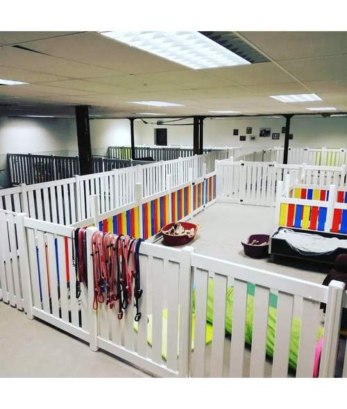 Doggy Day Care Fencing Panels