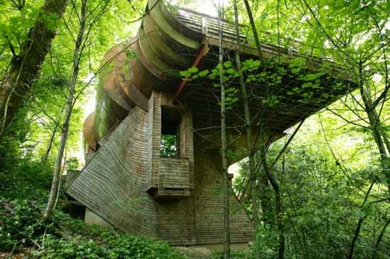 treehouse1 Top 5 The Most Amazing Wooden House