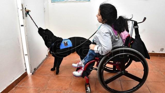 Los programas buscan mejorar las condiciones para la inclusión de las  personas con discapacidad.