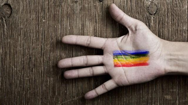 El texto invita al Ejecutivo a impulsar una investigación en el Tribunal Penal Internacional (TPI) contra los Estados que persigan a los homosexuales.