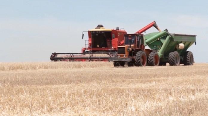 El aumento de la desecación superficial pone en riesgo los planes de siembra en el sudeste cordobés, norte bonaerense y sur de Santa Fe.