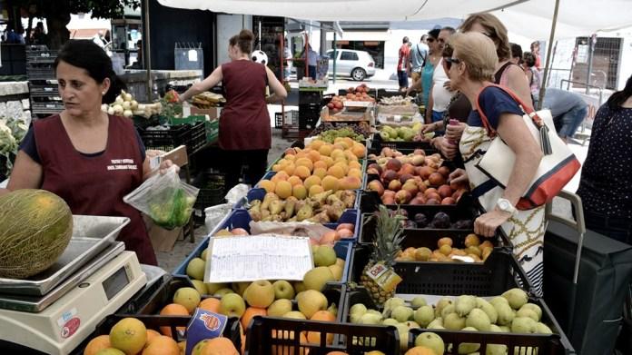 Entre enero a junio de 2021 ingresaron al mercado 430.899 toneladas de hortalizas.