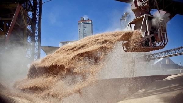 La harina de soja, principal producto exportado representó el 14,2% del total, mientras que el maíz significó el 11% y el aceite de soja el 6,9%, según el Indec.