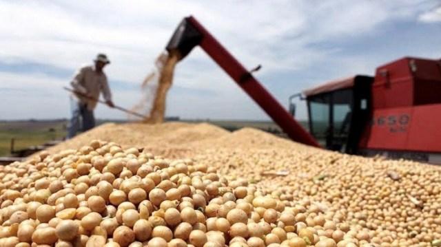 El aceite de soja tuvo un gran salto con un 2,83% de aumento.