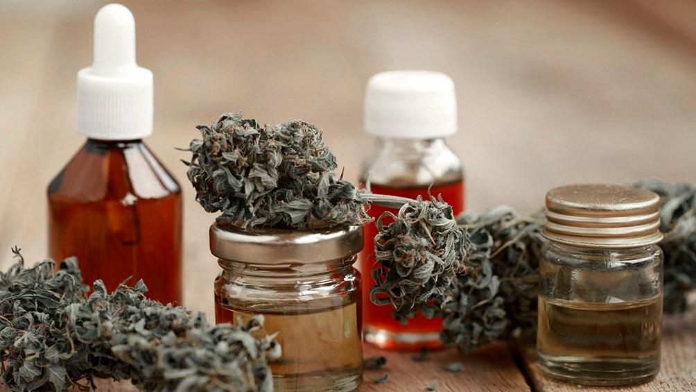 La ley de uso medicinal de cannabis quedó oficializada