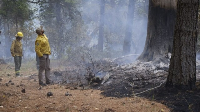 Hubo grandes destrozos en la zona a causa de los incendios,