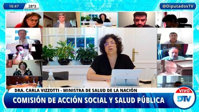 Vizzoti expuso ante la comisión de Acción Social y Salud Pública de Diputados a través de una videoconferencia.