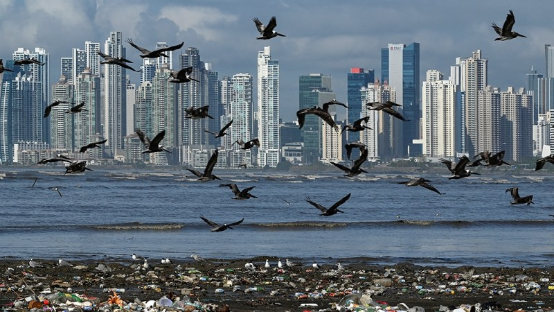 Cambio climático: alertan que las emisiones contaminantes mundiales alcanzarán un nuevo récord en 2023