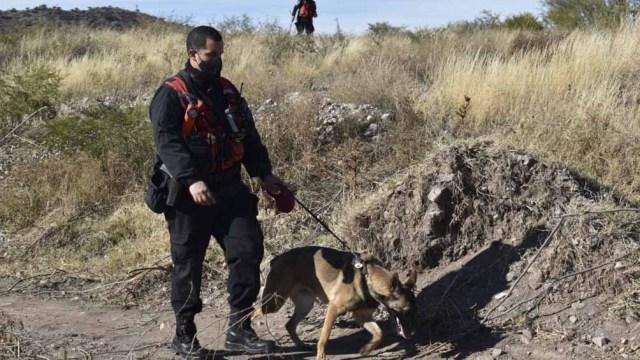 """Eric Lucero: """"¿Cómo la zona marcada por la perra entrenada, no había sido nunca rastrillada por la Policía?""""."""