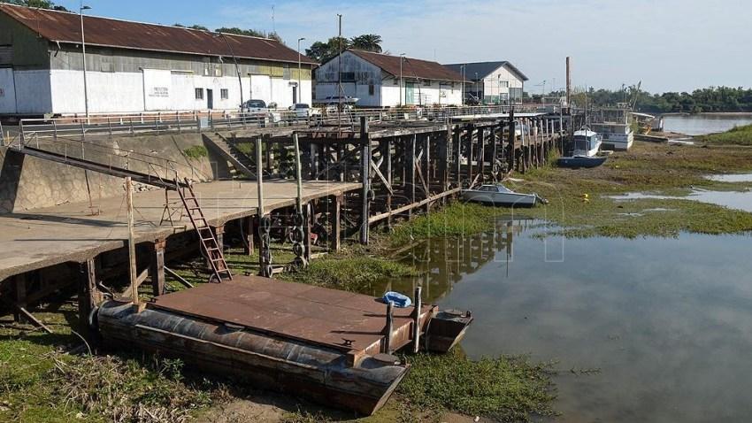 La escasez del calado limita la carga de los buques, que parten del Río Paraná con 5.000 toneladas menos en sus bodegas