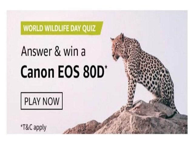 Amazon World Wildlife Day Quiz Answers