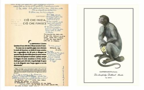 S.-La-nave-di-Teseo-il-libro-di-JJ-Abrams-nelle-librerie-italiane-dal-19-novembre-3