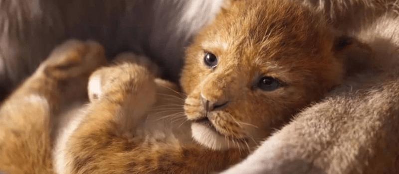 live action disney re leone