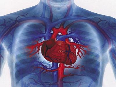 Tecniche microinvasive per operazioni cardiache, a Padova il primo intervento