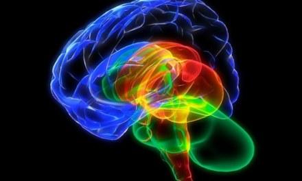 Fèrmati e medita: gli studi scientifici confermano i benefici della meditazione su mente e corpo