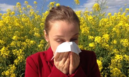 Una nuova era nella lotta alle allergie con il progetto europeo AIS LIFE, convegno finale a Pisa il 30 maggio