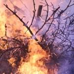 Incendi: un nuovo studio tra Pisa e Barcellona aiuta a stimare le aree colpite in funzione preventiva